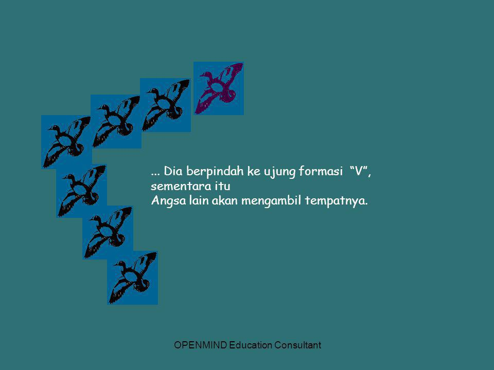 OPENMIND Education Consultant