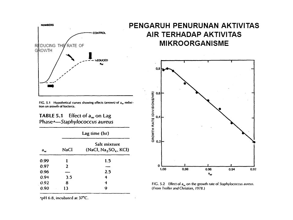 PENGARUH PENURUNAN AKTIVITAS AIR TERHADAP AKTIVITAS MIKROORGANISME