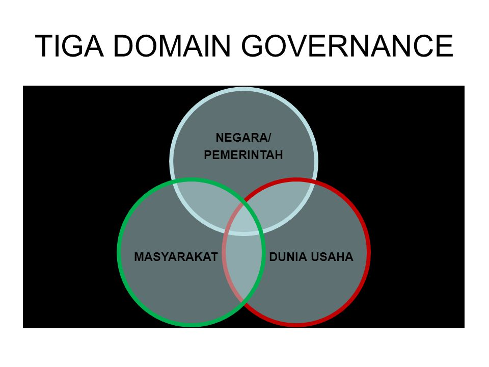 TIGA DOMAIN GOVERNANCE