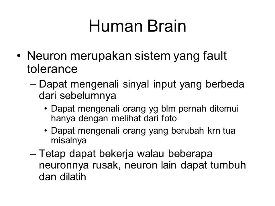Human Brain Neuron merupakan sistem yang fault tolerance