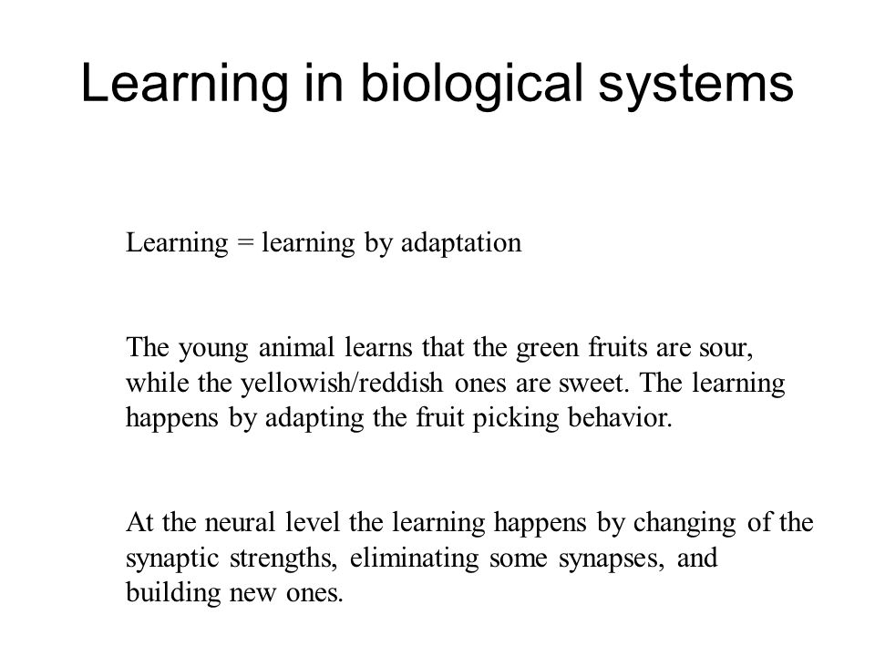 Learning in biological systems