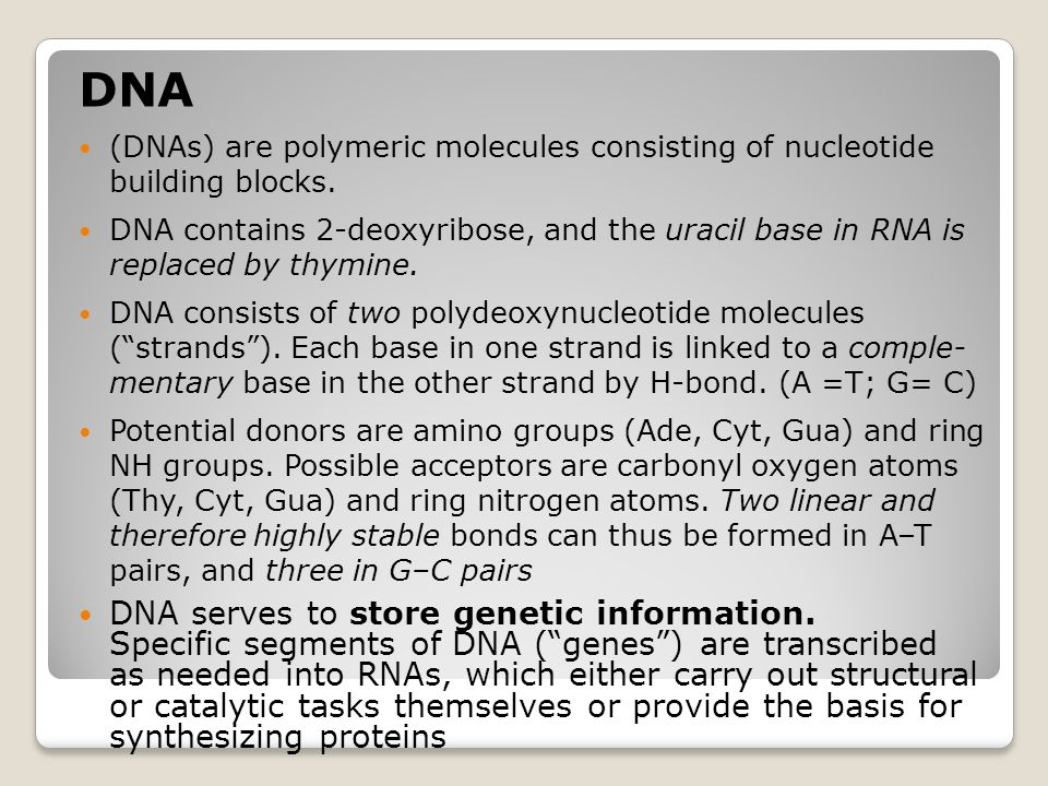 DNA (DNAs) are polymeric molecules consisting of nucleotide building blocks.