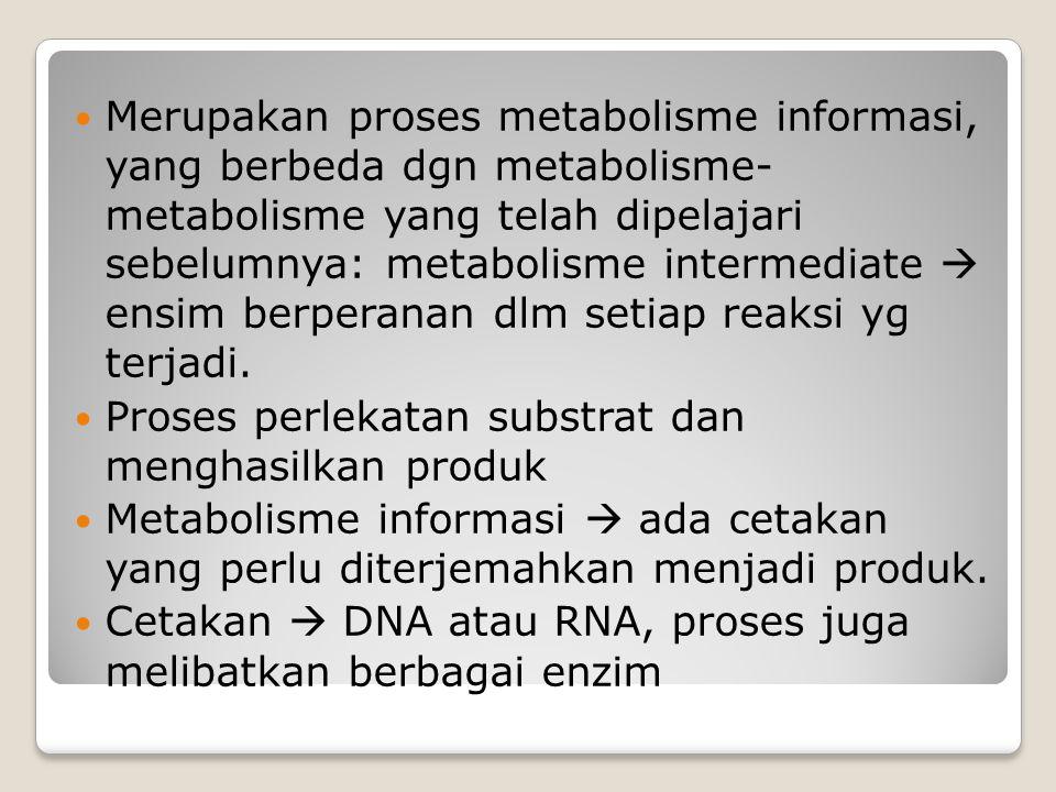 Merupakan proses metabolisme informasi, yang berbeda dgn metabolisme- metabolisme yang telah dipelajari sebelumnya: metabolisme intermediate  ensim berperanan dlm setiap reaksi yg terjadi.
