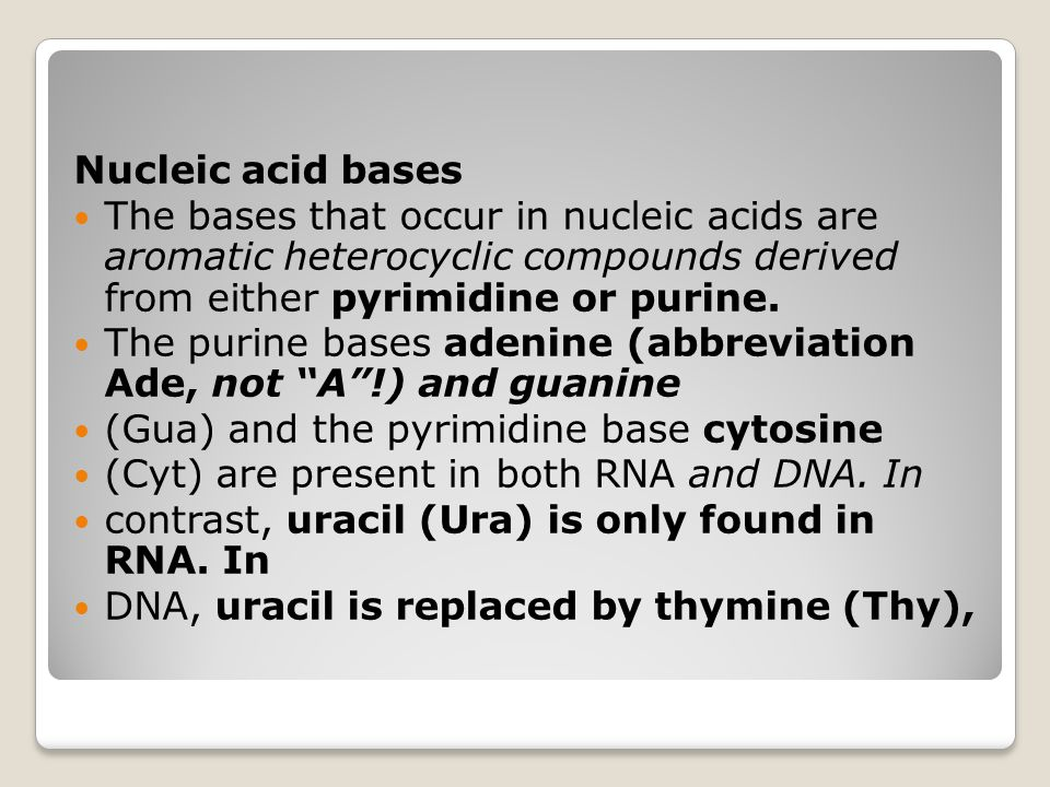 Nucleic acid bases The bases that occur in nucleic acids are aromatic heterocyclic compounds derived from either pyrimidine or purine.