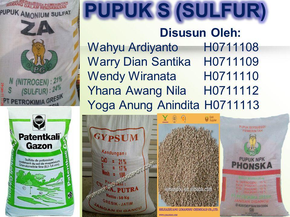 PUPUK S (SULFUR) Disusun Oleh: Wahyu Ardiyanto H0711108