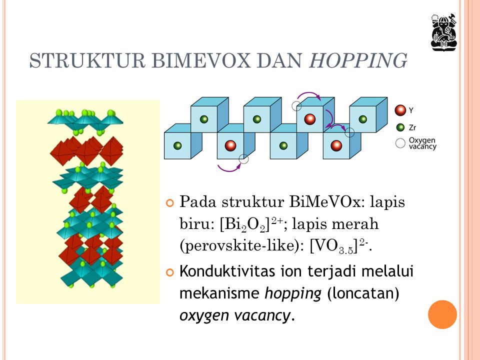 STRUKTUR BIMEVOX DAN HOPPING