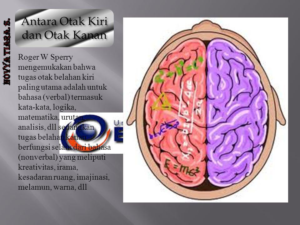 Antara Otak Kiri dan Otak Kanan