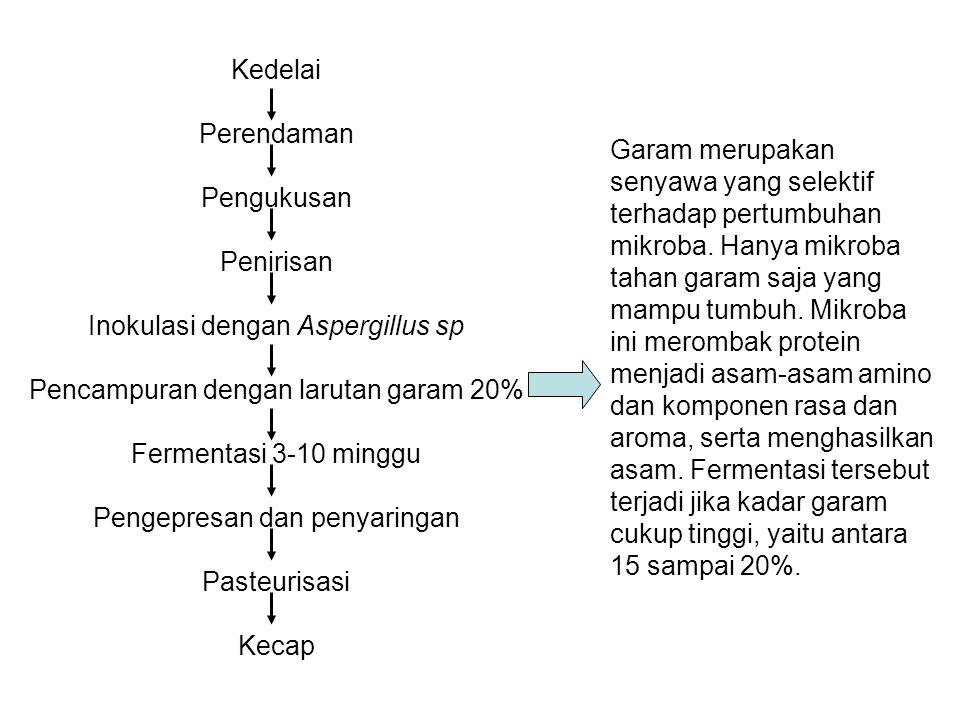 Inokulasi dengan Aspergillus sp Pencampuran dengan larutan garam 20%