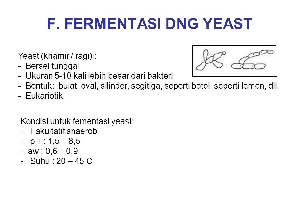 F. FERMENTASI DNG YEAST Yeast (khamir / ragi)i: Bersel tunggal
