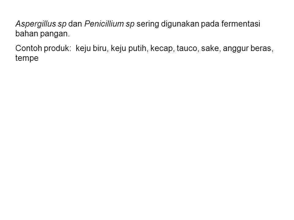 Aspergillus sp dan Penicillium sp sering digunakan pada fermentasi bahan pangan.