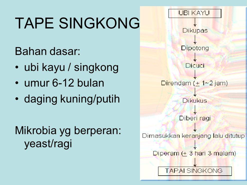 TAPE SINGKONG Bahan dasar: ubi kayu / singkong umur 6-12 bulan