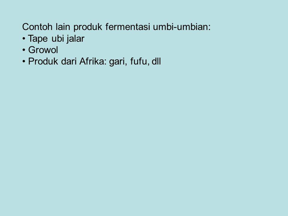 Contoh lain produk fermentasi umbi-umbian: