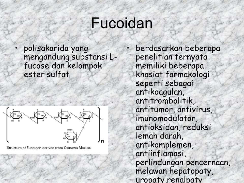 Fucoidan polisakarida yang mengandung substansi L-fucose dan kelompok ester sulfat.