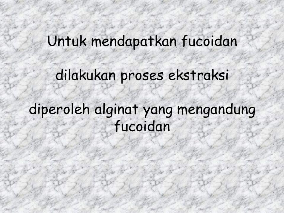 Untuk mendapatkan fucoidan dilakukan proses ekstraksi diperoleh alginat yang mengandung fucoidan
