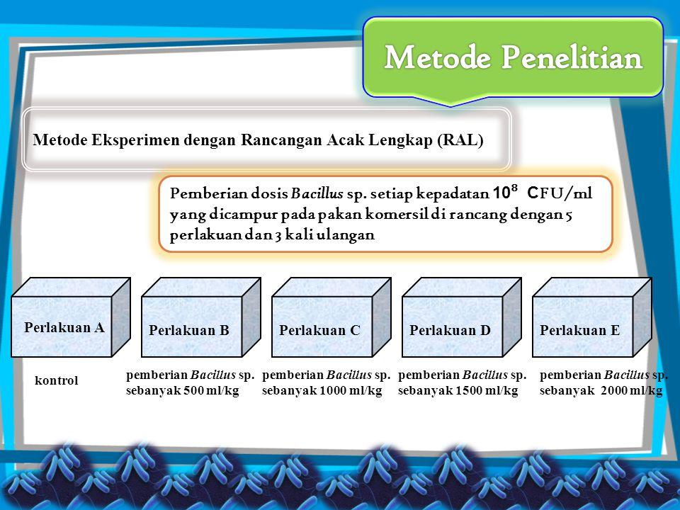Metode Penelitian Metode Eksperimen dengan Rancangan Acak Lengkap (RAL)