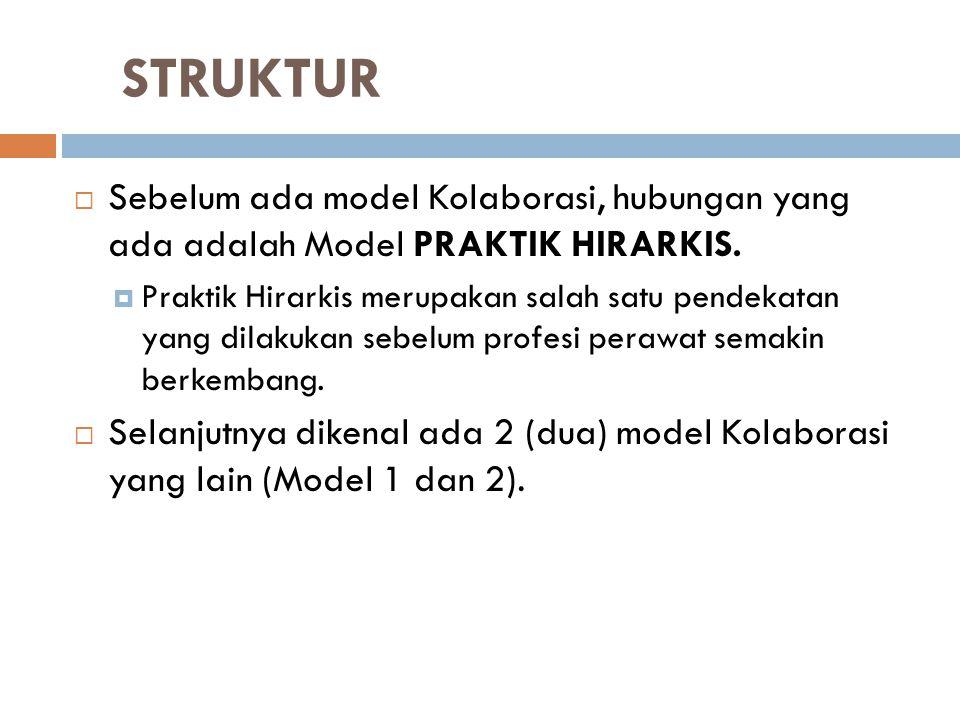 STRUKTUR Sebelum ada model Kolaborasi, hubungan yang ada adalah Model PRAKTIK HIRARKIS.