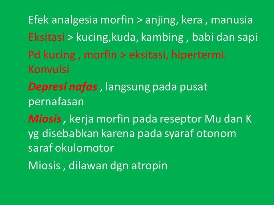 Efek analgesia morfin > anjing, kera , manusia Eksitasi > kucing,kuda, kambing , babi dan sapi Pd kucing , morfin > eksitasi, hipertermi.