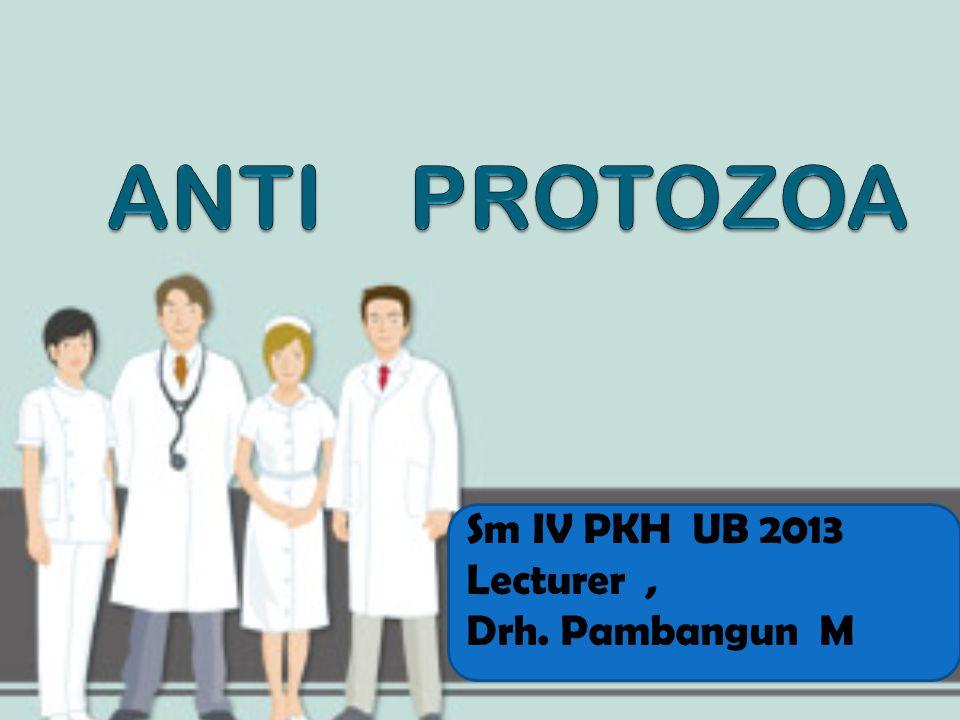 ANTI PROTOZOA Sm IV PKH UB 2013 Lecturer , Drh. Pambangun M