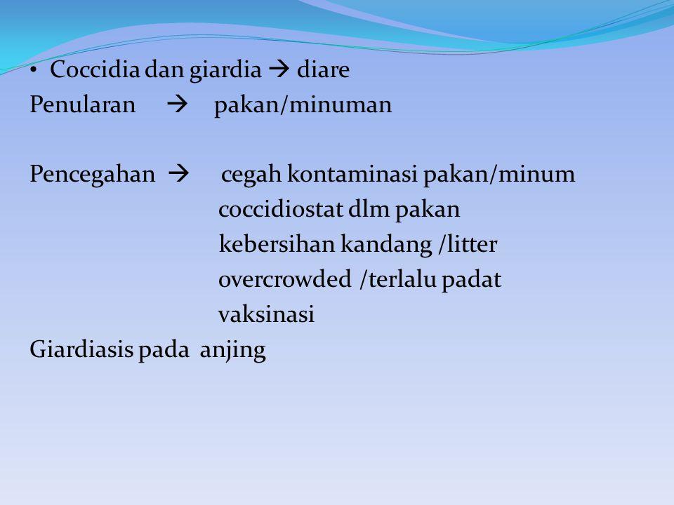 Coccidia dan giardia  diare