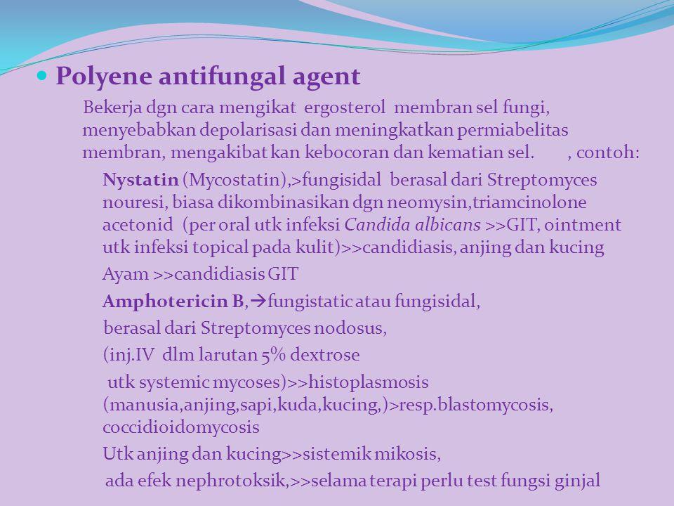 Polyene antifungal agent