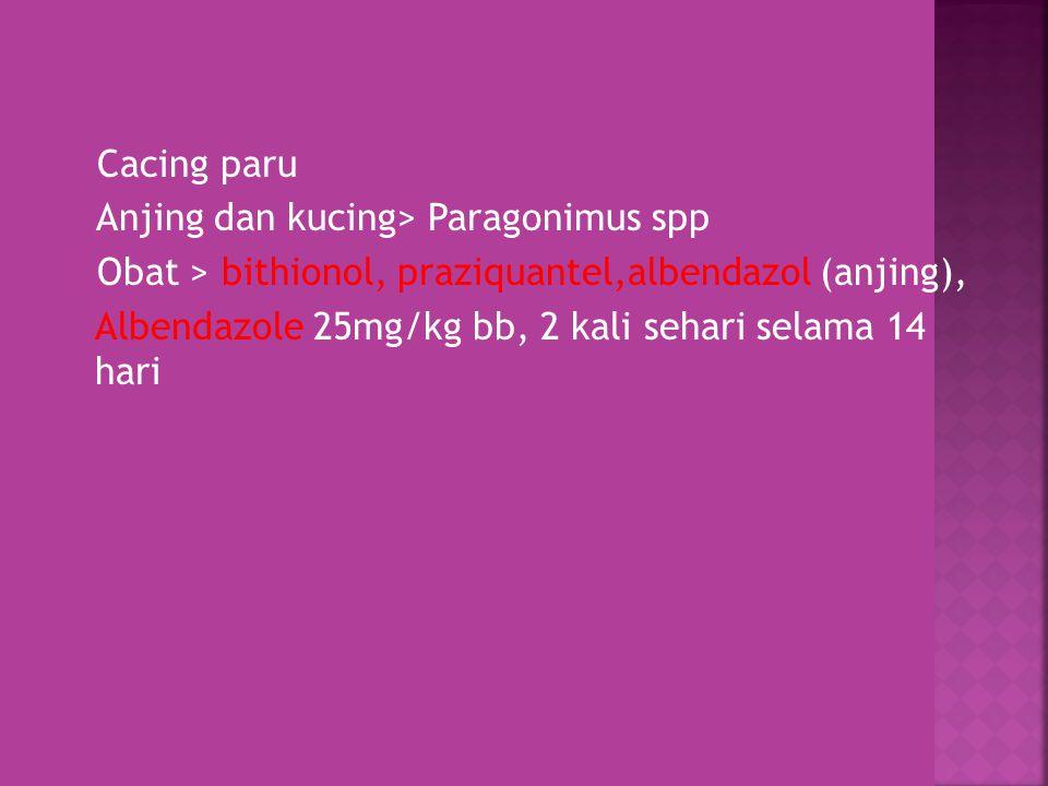 Cacing paru Anjing dan kucing> Paragonimus spp Obat > bithionol, praziquantel,albendazol (anjing), Albendazole 25mg/kg bb, 2 kali sehari selama 14 hari