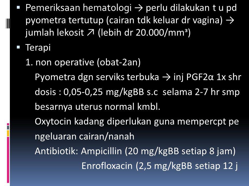 Pemeriksaan hematologi → perlu dilakukan t u pd pyometra tertutup (cairan tdk keluar dr vagina) → jumlah lekosit ↗ (lebih dr 20.000/mmᶟ)