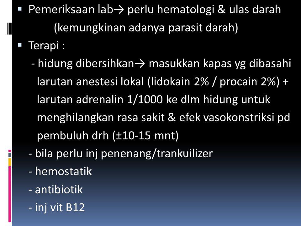 Pemeriksaan lab→ perlu hematologi & ulas darah