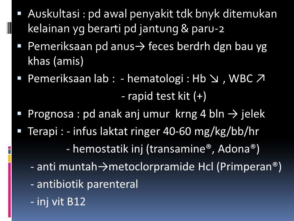 Pemeriksaan pd anus→ feces berdrh dgn bau yg khas (amis)