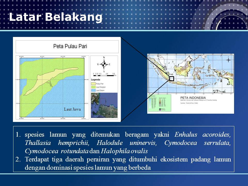 Latar Belakang Laut Jawa.