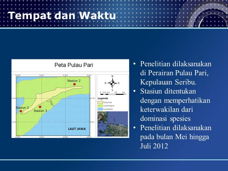 Tempat dan Waktu Penelitian dilaksanakan di Perairan Pulau Pari, Kepulauan Seribu.