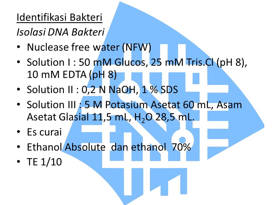 Identifikasi Bakteri Isolasi DNA Bakteri. Nuclease free water (NFW) Solution I : 50 mM Glucos, 25 mM Tris.Cl (pH 8), 10 mM EDTA (pH 8)