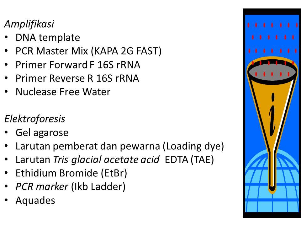 Amplifikasi DNA template. PCR Master Mix (KAPA 2G FAST) Primer Forward F 16S rRNA. Primer Reverse R 16S rRNA.
