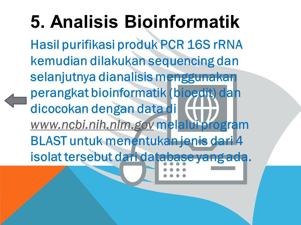 5. Analisis Bioinformatik