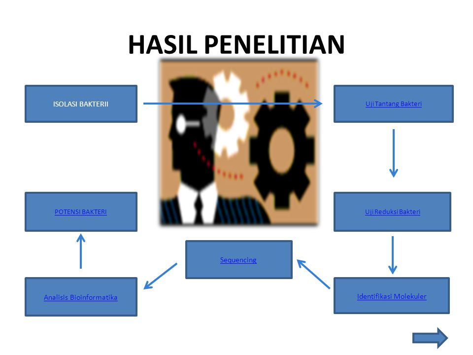 HASIL PENELITIAN ISOLASI BAKTERII Sequencing Analisis Bioinformatika