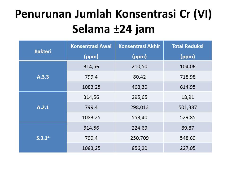 Penurunan Jumlah Konsentrasi Cr (VI) Selama ±24 jam
