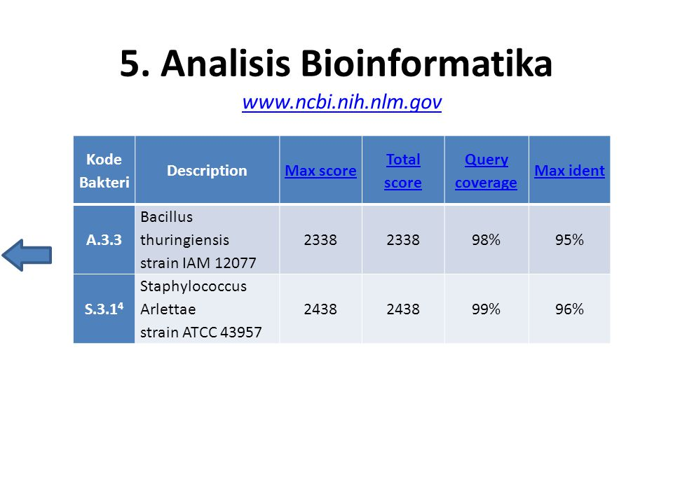 5. Analisis Bioinformatika