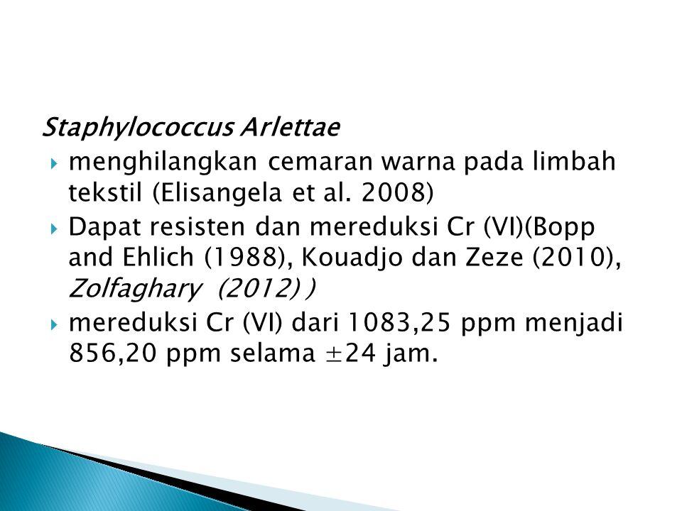 Staphylococcus Arlettae