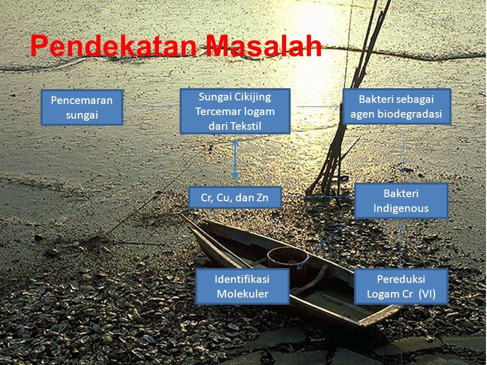 Pendekatan Masalah Pencemaran sungai