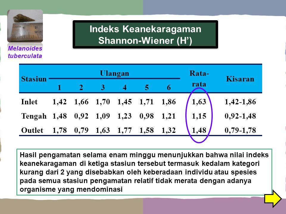 Indeks Keanekaragaman Shannon-Wiener (H')