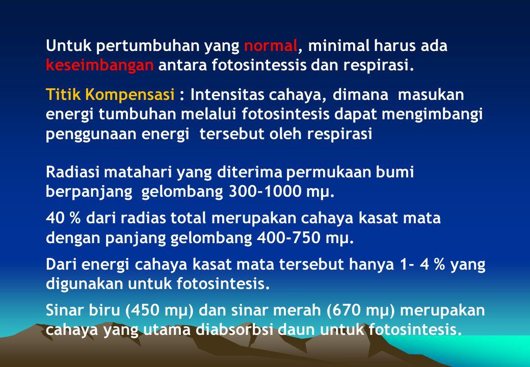 Untuk pertumbuhan yang normal, minimal harus ada keseimbangan antara fotosintessis dan respirasi.