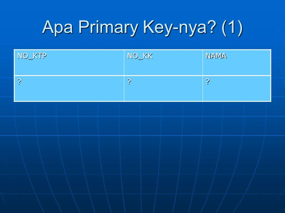 Apa Primary Key-nya (1) NO_KTP NO_KK NAMA