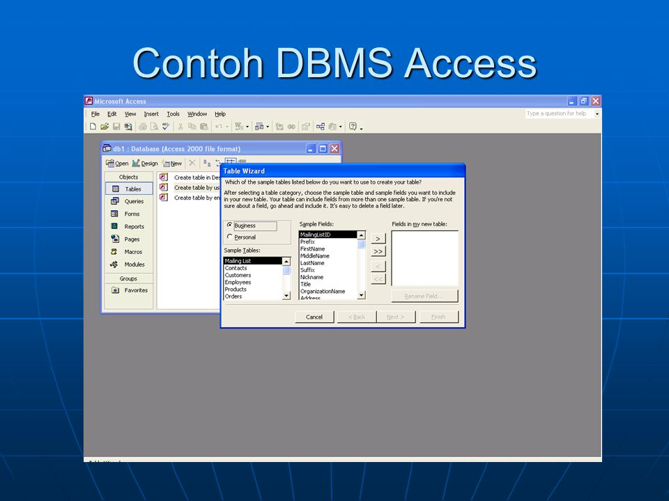 Contoh DBMS Access