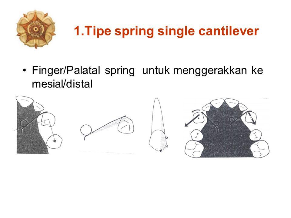 Tipe spring single cantilever