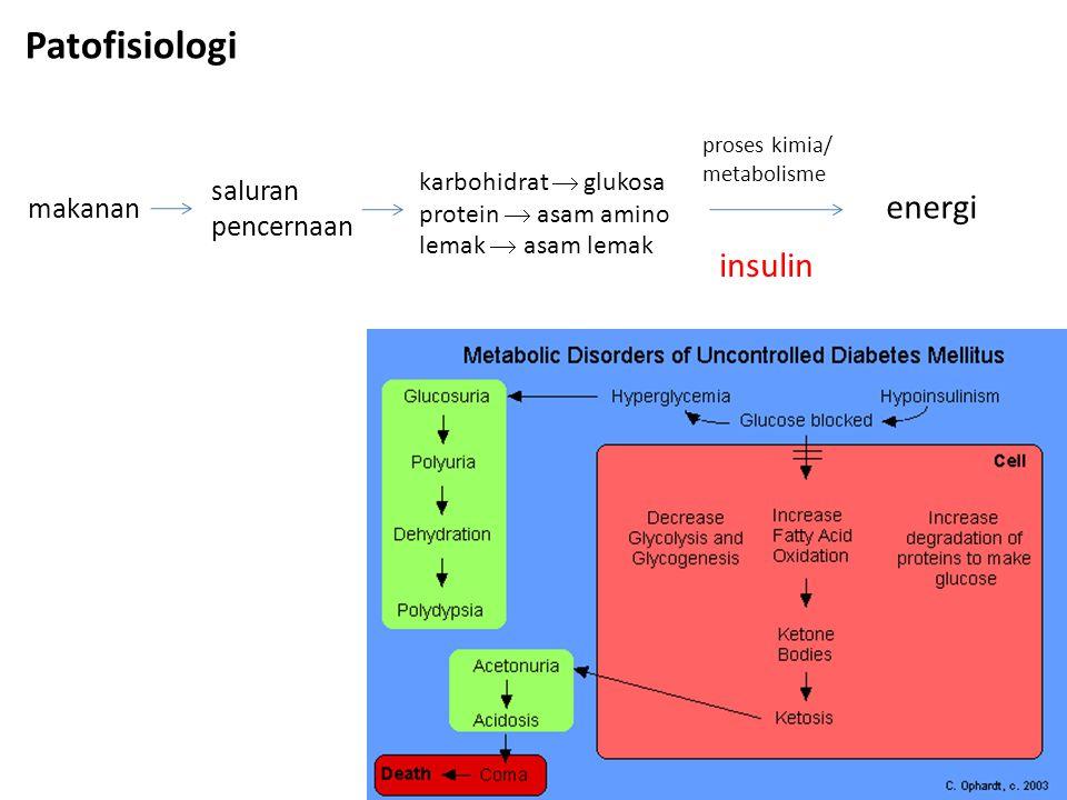 Patofisiologi energi insulin saluran pencernaan makanan