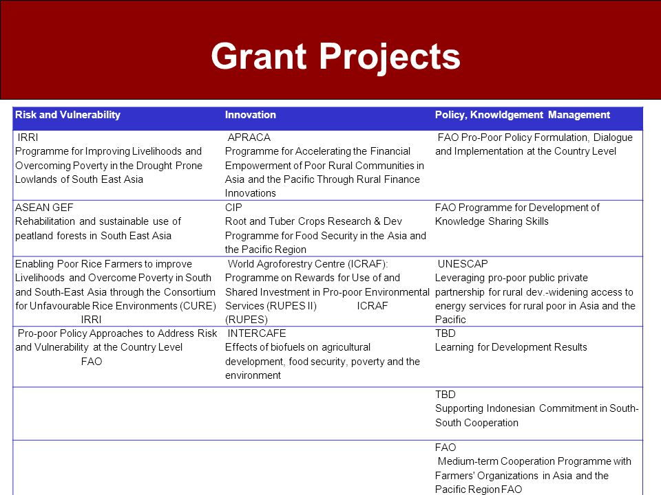 Grant Projects Risk and Vulnerability Innovation