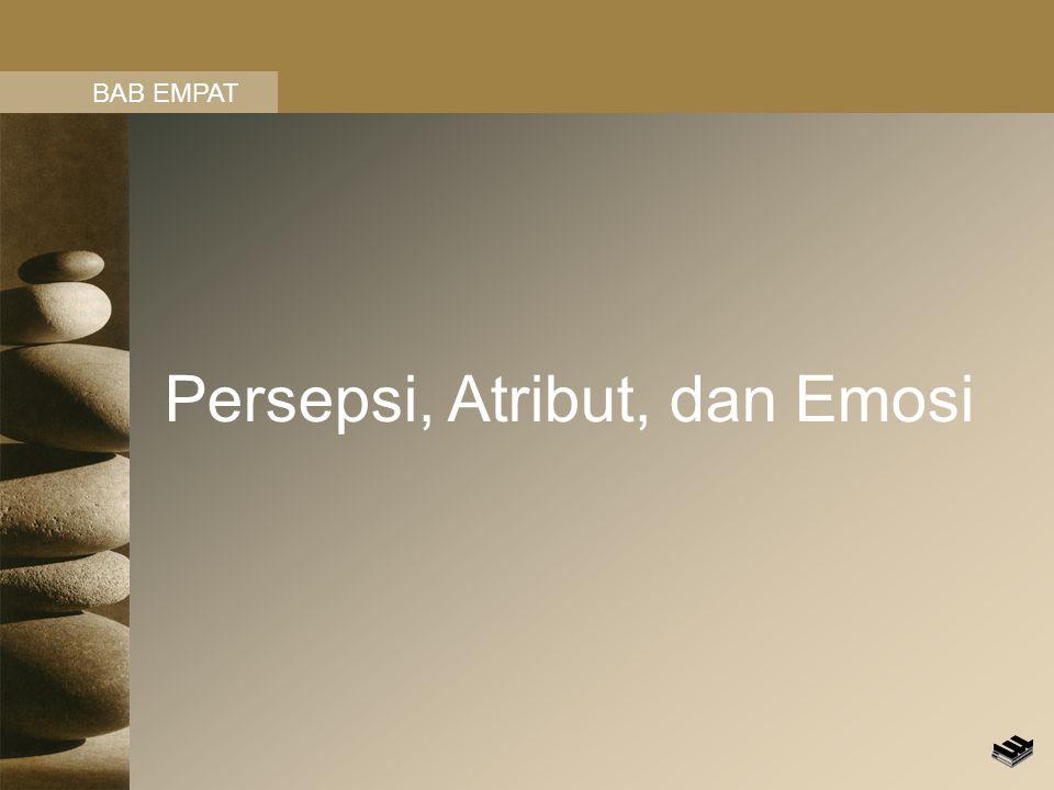 Persepsi, Atribut, dan Emosi