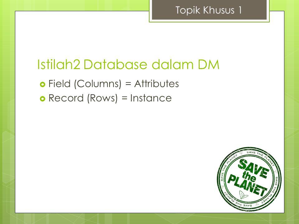 Istilah2 Database dalam DM