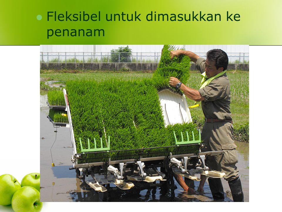 Fleksibel untuk dimasukkan ke penanam