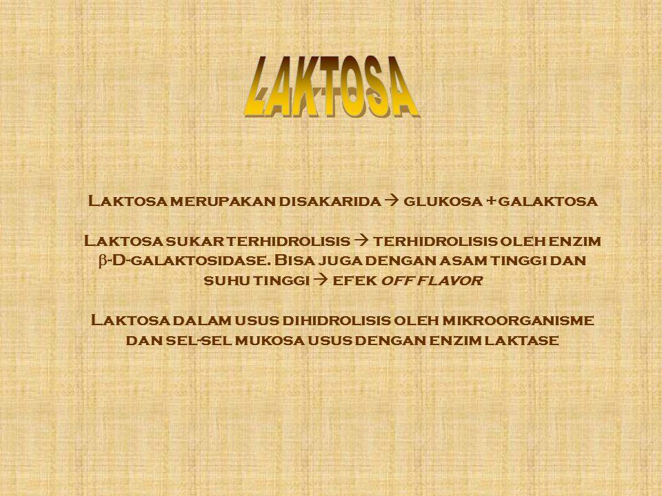Laktosa merupakan disakarida  glukosa +galaktosa