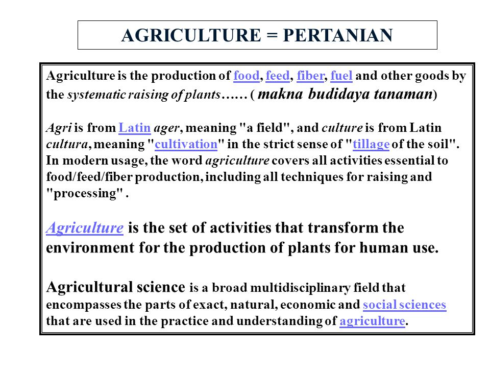 AGRICULTURE = PERTANIAN